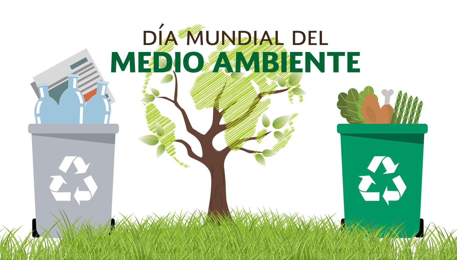 DIA MUNDIAL DEL MEDIO AMBIENTE - Vasito y Macetilla